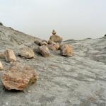 steinspur